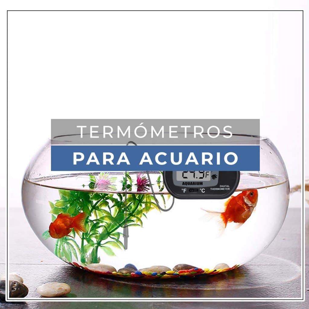 Termómetro acuario